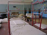 Брусья гимнастические женские разновысокие, фото 1