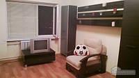 Хорошая квартира возле ТРЦ Любава, Студио (59941)