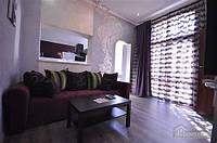 Яркая стильная квартира на 4 человека возле Горсада, 2х-комнатная (21267)