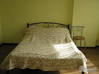 Квартира на Пантелеимоновской, Студио (35249)