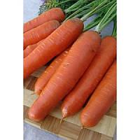 Семена моркови Анета F1 (50 000 семян) Moravoseed