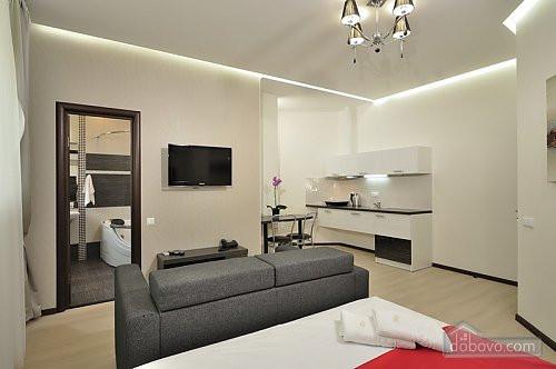 VIP апартаменты в стиле модерн с джакузи, Студио (24018) - Dobovo в Киеве