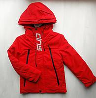 Демисезонная куртка glo-story, размер 170