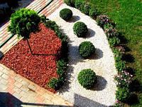 Группы растений с декоративной отделкой. Озеленение. Благоустройство.