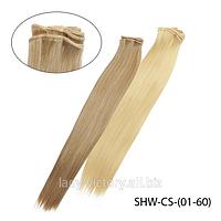 """Волосы искусственные на трессах в стиле """"Гладкий шелк""""  SHW-CS-(01-60)"""