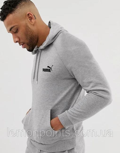 Теплый мужской спортивный костюм Puma с капюшоном (Пума) серый (Флис)