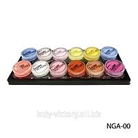Набор акриловых пудр из 12 цветовых оттенков. NGA-00