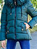 Куртка жіноча зелена зимова код П338, фото 5