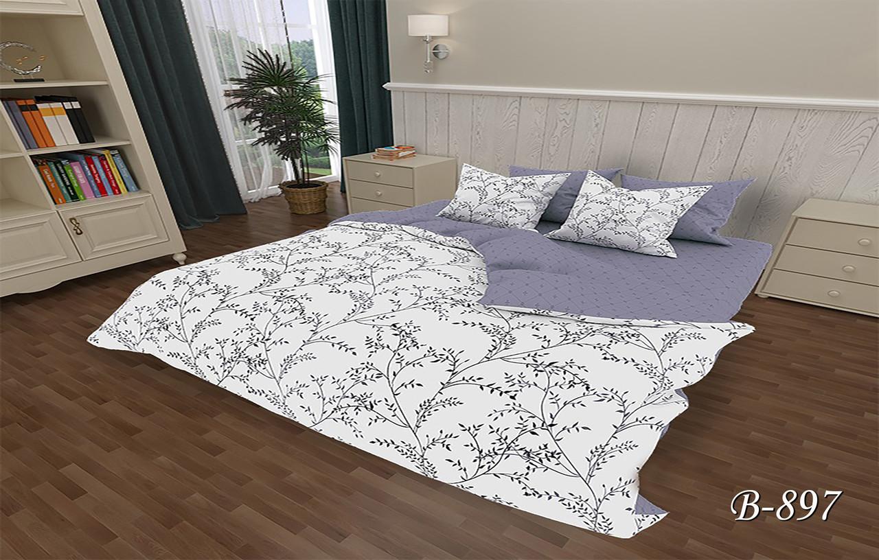 Двоспальне постільна білизна Тет-А-Тет В-897 бязь (економ)