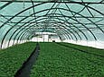 Сетка затеняющая зелёная Karatzis (Греция), фото 5