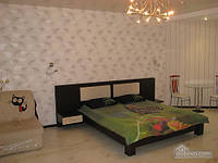 Квартира в новом доме на Черемушках, Студио (70244)