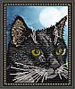 """Рисунок на ткани для вышивания бисером """"Черный кот"""""""