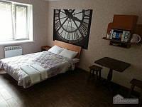 Лучшие апартаменты в Виннице, Студио (85187)