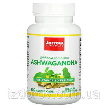 Jarrow Formulas, Ашвагандха, Ashwagandha, 300 мг, 120 рослинних капсул
