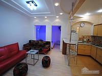 Квартира с ярким дизайном и джакузи, 2х-комнатная (14164)