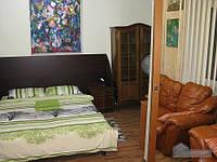 Просторная квартира с кожаной мебелью, 3х-комнатная (12554)