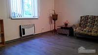 Уютная и укомплектованная комната, 2х-комнатная (80351)