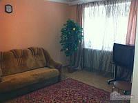 Квартира возле Гагаринского парка, 2х-комнатная (85883)