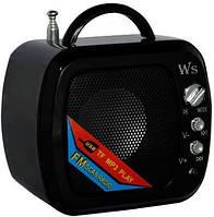 Digital Speaker   Mini WS-575 (портативное радио+TF), фото 1