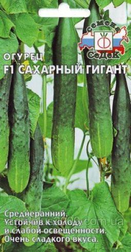 Семена Огурец Сахарный гигант F1,  0,2 грамма Седек - Агроплюс2000 в Харькове