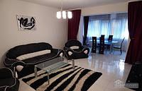 Апартаменты в центре в новом доме, 3х-комнатная (45805)