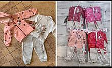 Костюми для дівчаток 6-9-12-18 місяців утеплені тринитки з начосом