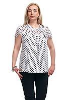 Женская блузка большого размера горошек Белая