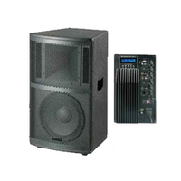 Активная акустическая система BIG PWF12A