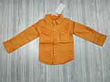 Рубашка оранж 2995, фото 3