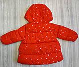 Куртка деми для девочек со звездочками красная, фото 3