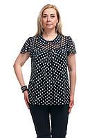 Женская блузка большого размера горошек Черная