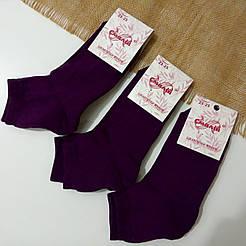 Женские носки с махровой стопой Смалий, Рубежное Темно фиолетовые