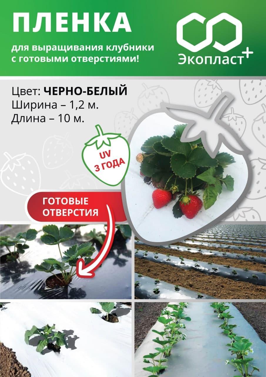 ЧОРНО-БІЛА плівка для полуниці 1,2х10 м
