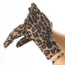 Женские перчатки из искусственной замши с леопардовым принтом (арт. 19-21-5) S