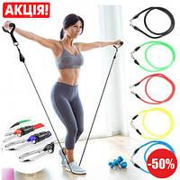 Набор трубчатых эспандеров с петлями для упражнений фитнеса и спорта, резинки для фитнеса