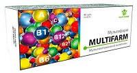 Мультифарм  (40 таб., Элит-Фарм) - мультивитаминный комплекс для поддержания здоровья
