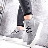 Ботинки женские Tad серые 2924, фото 2