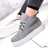 Ботинки женские Tad серые 2924, фото 3