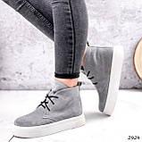 Ботинки женские Tad серые 2924, фото 5