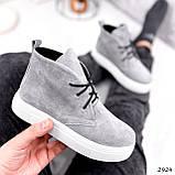 Ботинки женские Tad серые 2924, фото 8