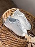 Кроссовки женские Alesan белые 4296, фото 4