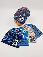 Дитячі польські демісезонні трикотажні шапки для хлопців, р.46-50, Ambra, фото 1