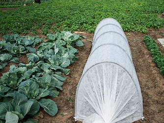 Парник Теплиця з агроволокна 6 метрів 42 гр/м2 в комплекті з кілочками