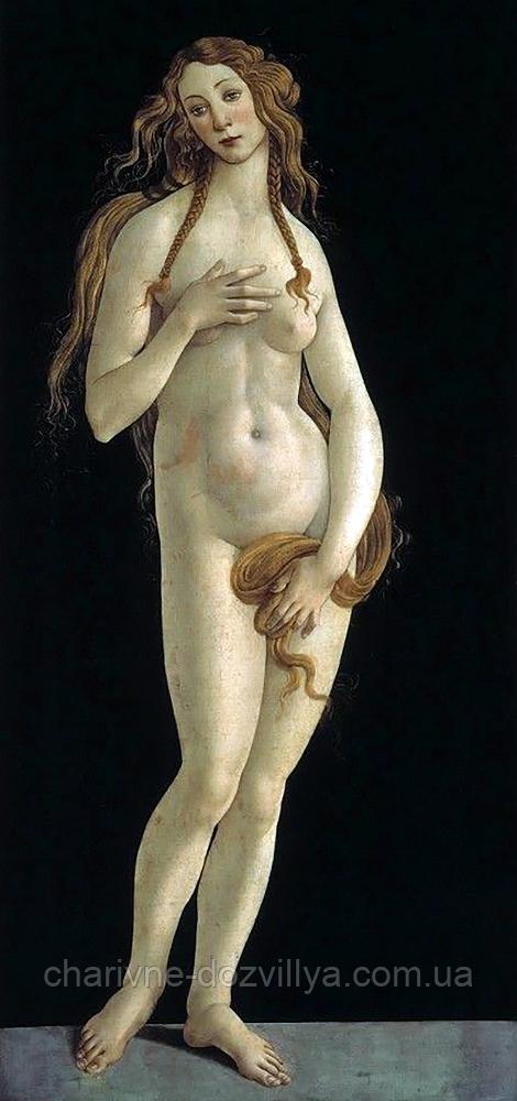 """Набор алмазной вышивки (мозаики) """"Венера"""". Художник Sandro Botticelli"""