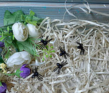 Декор на Хелловін Павук 2,5 см