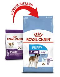 Корм для цуценят Royal Canin (Роял Канін) GIANT PUPPY для гігантських порід до 8 місяців, 1 кг