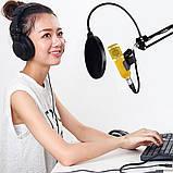 Студийный микрофон Music D.J. M800U со стойкой и поп-фильтром Gold Siamo, фото 5