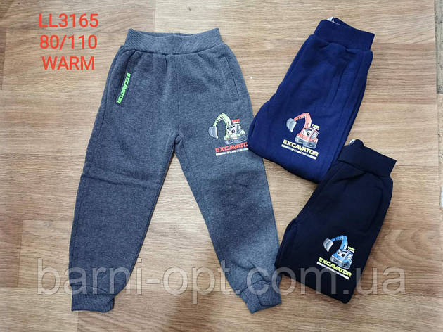 Спортивные брюки утепленные на мальчика оптом, Sincere, 80-110 рр, фото 2