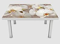 Наклейка на стол Zatarga Орхидея и капли росы 02 600х1200 мм Z180235 TR, КОД: 1804682