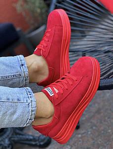 Кросівки жіночі 8 пар в ящику бордового кольору 36-41